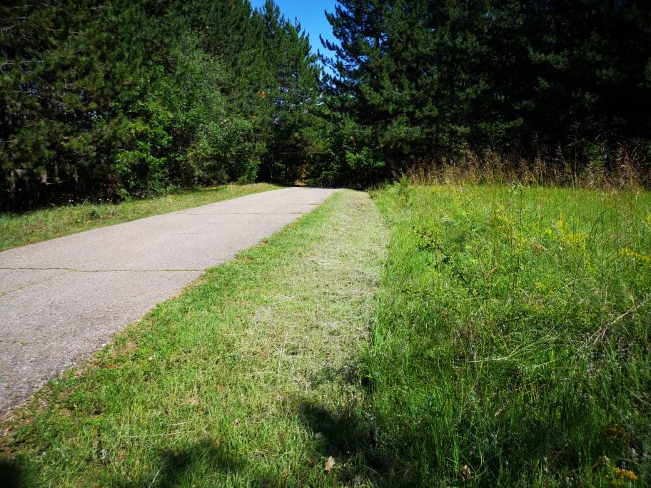 Започна чистењето на крупната вегетација околу локалните патишта во селските средини
