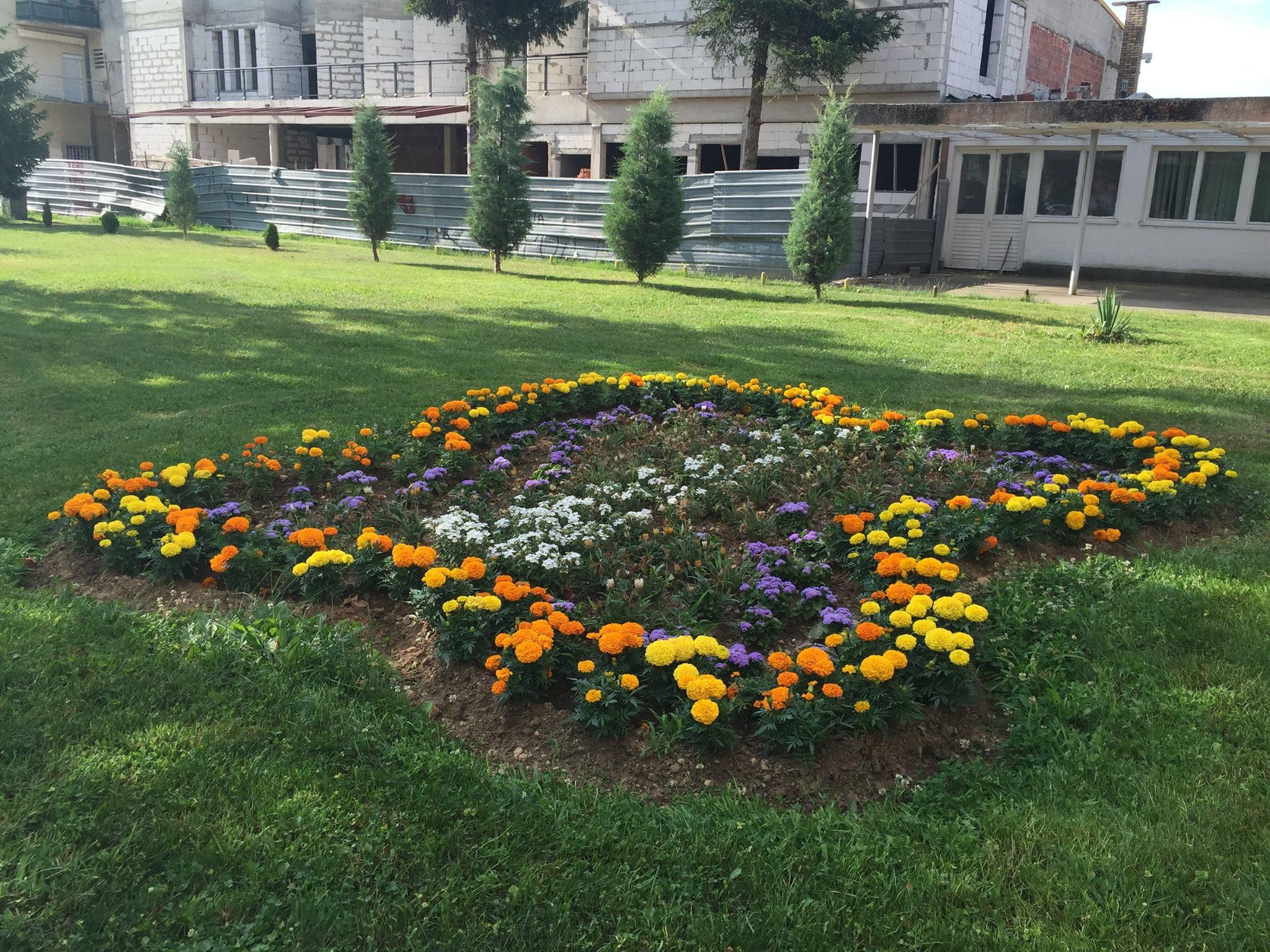 Започна цветното уредување на Македонска Каменица